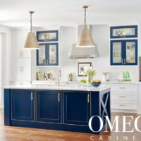 Omega Cabinets Spring Sale Denver CO