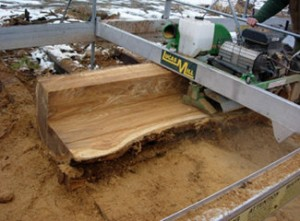 The Urban Wood Initiative – Design using reclaimed recycled wood